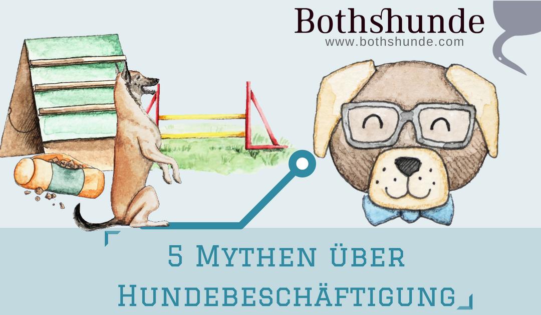 5 Mythen über Hundebeschäftigung