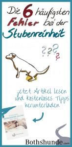 Wie wird der Welpe stubenrein Fehler bei der Hundeerziehung