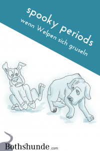 spooky periods Fremdelphasen gruseln Welpen Entwicklung Hund