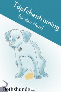 Stubenreinheit Welpe stubenrein Tipps Hund sauber werden
