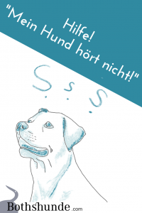 Hund hoert nicht Hundetraining Probleme Online Training