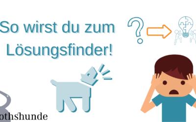So findest du Lösungen und gewöhnst deinem Hund ab was du nicht willst
