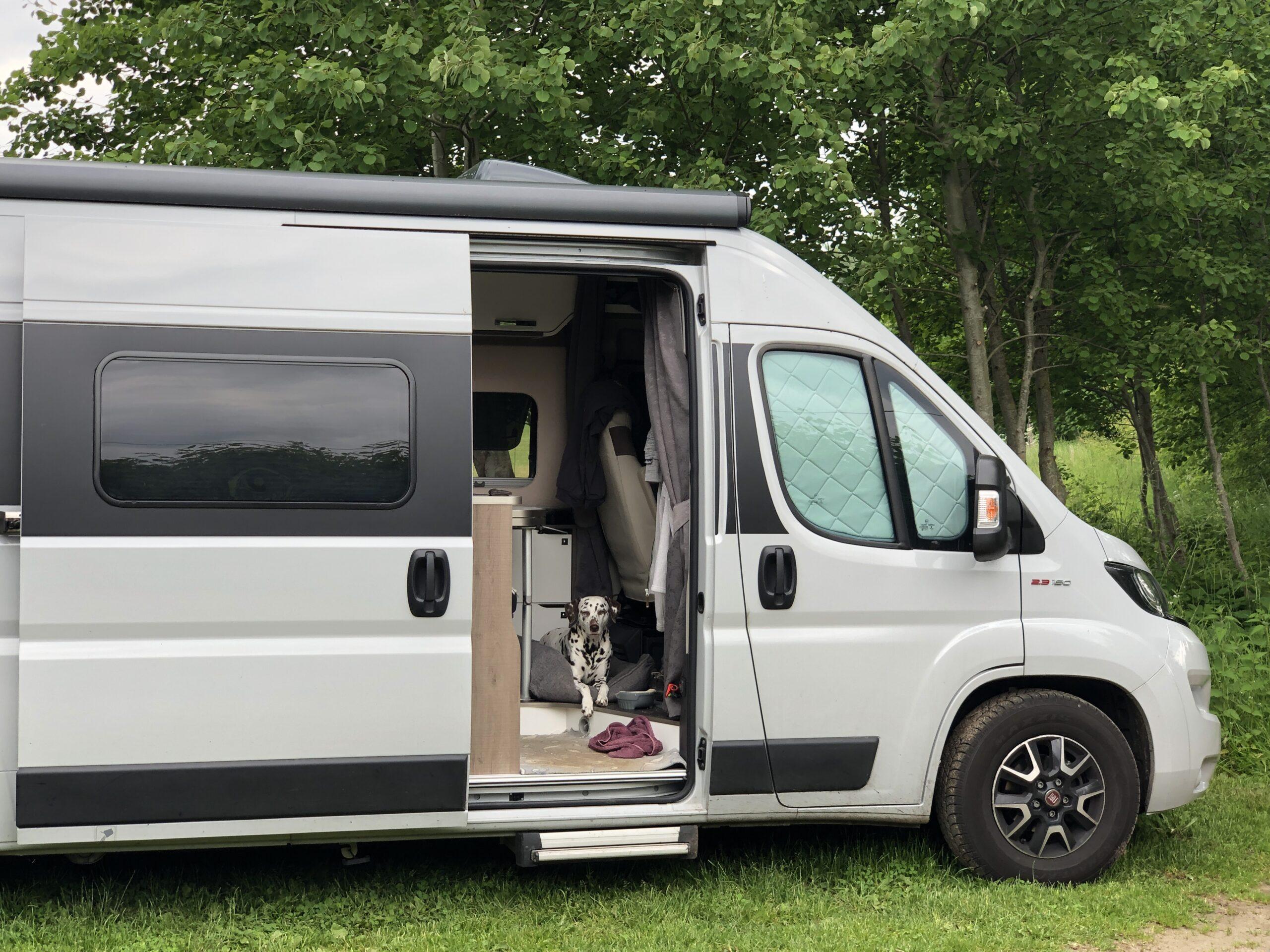 Camping mit Hund Wohnmobil
